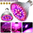 8W-80W LED Grow Light E26/27 Lamp Bulb For Indoor Plant Hydroponic Full Spectrum