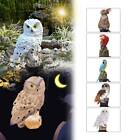 Solar Powered Garden Led Lights Owl Parrot Animal Lawn Ornament Waterproof Lamp