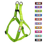 Pet Soft Adjustable Reflective Puppy / Dog Harness by Pawtitas