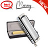 More images of Harmonica Set Mouth Organ 10 Hole 40 Tones C Major Blues Metal Steel with Case