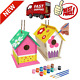 2 Pack DIY Bird House Kit Build and Paint Birdhouse Crafts For Kids Ages 4- 8 photo