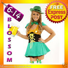 895 St Patricks Leprechaun Oktoberfest BeerMaid Costume
