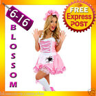 F16 Ladies Little Miss Muffet Storybook Fairy Tale Fancy Dress Halloween Costume