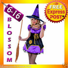 G57 Ladies Midnight Wicked Witch Fancy Dress Scary Halloween Costume Outfit Hat