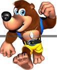Choose size: BANJO KAZOOIE WALL STICKER Decal Removable Art Decor Mural
