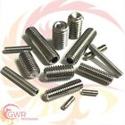 M2 M2.5 M3 M4 M5 M6 M8 M10 A2 Stainless Socket Grub Screws
