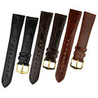 Hirsch GENUINE CROCO / CROCODILE Shiny Crocodile Leather Watch Strap & Buckle