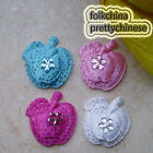 Mixed Overlay Fruit Appliques Padded Craft Sewing Scrapbooking Trimming APQN