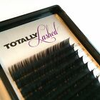 Kyпить TOTALLY Lashed - Individual Eyelash Extensions - Synthetic Mink Big Blink Lashes на еВаy.соm