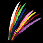 9 X ASSORTED GOOSE FLIGHT WING FEATHERS -millinery, art, craft, indian, tribal,