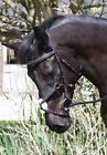 Rhinegold Mexican Style Elegance Bridle Stitch Detail Grackle Noseband