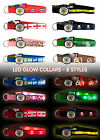 PETSGLOW LED LIGHT UP DOG COLLAR puppy night safety flashing collars visibility