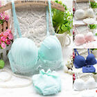 Lace Push-Up Soft Padded Underwire 5 Color Bra Sets 32 34 36 (AB) 8884-01