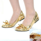 1 pair of Golden/Silver-Color Performance Belly Dance Shoes with Bag