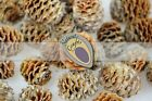 Small Pine Cones - meridianum - christmas decorations - 3-4cm