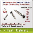 M4 A4 Stainless Steel MARINE GRADE SOCKET CAP Screws Allen Key Bolts SMALL QTY