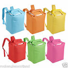 19L Insulated Backpack Rucksack Cooler Box Bag Food Can Ice Camping Coolbag