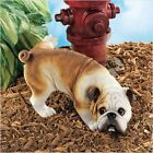 Wee-Willy the Peeing English Bulldog. Home Decor Yard & Garden Products & Gifts.