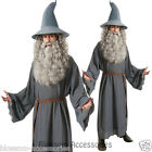 C991 The Hobbits Gandalf Wizard Lord of the Ring Fancy Dress Party Adult Costume
