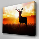 A215 Orange Sunset Stag Shadow Canvas Art Ready to Hang Picture Print