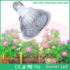 NEW 6W 24W 90W LED Plant Grow Light E27 for Flowering leafing Hydroponics System