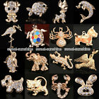 Animal Insects Brooch KC Gold Diamante Children Women Party Gifts Pin Badge Xmas