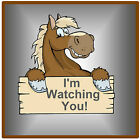 BROWN HORSE - SET OF FUN NOVELTY SOUVENIR COASTERS - EASY CLEAN / GIFTS