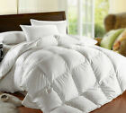 Unbranded New Light Weight White Goose Feather Comforter ...