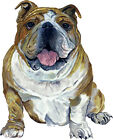Bulldog Bull Dog Lover Home Office Room Camp Decor Decal Wall Art Gift Sticker