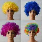 Afro Clown Costume Women's Men's Short Curly Wavy Hair Wigs Full Cosplay Party