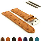 Genuine Ostrich Leather Skin Watch Strap Band Amsterdam SS. Buckle, Spring Bars