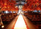 """50 ft Satin Aisle Runner 60"""" wide 100% Seamless Fabric Wedding 20 Colors"""