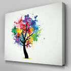AB656 Modern Rainbow Painted Tree Canvas Wall Art Abstract Picture Large Print