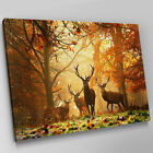 A240 Stag Herd Sunset Autumn Forest Canvas Wall Art Animal Picture Large Print