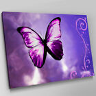 A262 Neon Pink Purple Butterfly Cloud Canvas Wall Art Animal Picture Large Print