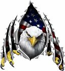 American flag eagle rip decal Camper RV motor home mural graphic