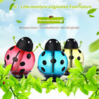 New Essential Oil Purifier Ultrasonic Diffuser Air Mist Humidifier Aromatherapy