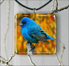 BIRD BLUE FEATHERS PENDANTS NECKLACE M - L - XL -loi8X