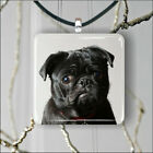 DOG BLACK PUG FACE #2 PENDANT NECKLACE 3 SIZES CHOICE -jko9Z