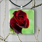 FLOWER RED ROSE #8 PENDANT NECKLACE 3 SIZES CHOICE -hdr4Z