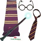 Childrens Harry Potter inspired Fancy Dress costume Gryfinndor Hogwarts outfit