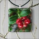 BUNCH OF RED CRANBERRY PENDANT NECKLACE 3 SIZES CHOICE -fgh6Z