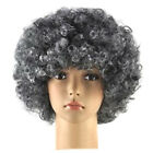 Men/Lady Clown Afro Hair Football Fan Costume Cosplay Adult Child Curly Wig USA