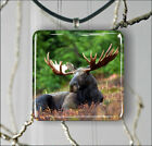 MOOSE BIG BUCK AMERICAN WILD LIFE PENDANT NECKLACE 3 SIZES CHOICE -kme6Z
