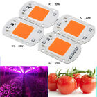 220/110V 20/30/50W Full Spectrum LED COB Chip Grow Light Plant Growing Lamp Bulb