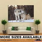 Wall Art Canvas Picture Print - Kissing Wolf 3.2