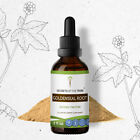 hydrastis canadensis - Goldenseal Root Tincture Alcohol Liquid Extract, Organic (Hydrastis Canadensis)