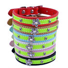 Dog Collar Rhinestone Flower PU Leather Dog Necklace Small Pet Dog Supplies