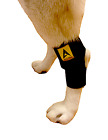 Dog Pet Wrap Rear Leg Brace Canine Joint Injury Paw Compression Hock Support