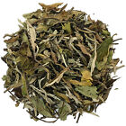 PAI MU TAN White Loose Leaf Tea Available in a Choice of Quantities